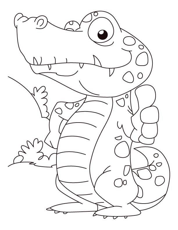 Free coloring and drawings A confident little Alligator Coloring page