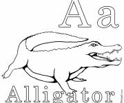 Free coloring and drawings Crocodile simple Coloring page