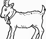 Free coloring and drawings Easy to cut goat Coloring page