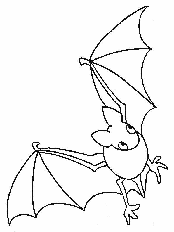 Free coloring and drawings A Bat drawing to download Coloring page