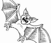 Coloring pages Scary bat