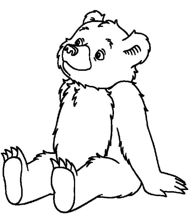 Free coloring and drawings Cute bear Coloring page