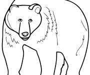 Free coloring and drawings Giant bear Coloring page