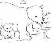 Coloring pages Grizzly and cubs