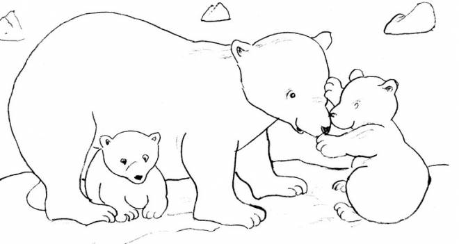 Free coloring and drawings Grizzly and cubs Coloring page