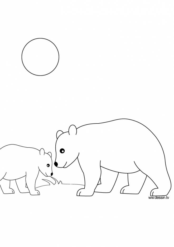 Free coloring and drawings Outdoor bear Coloring page