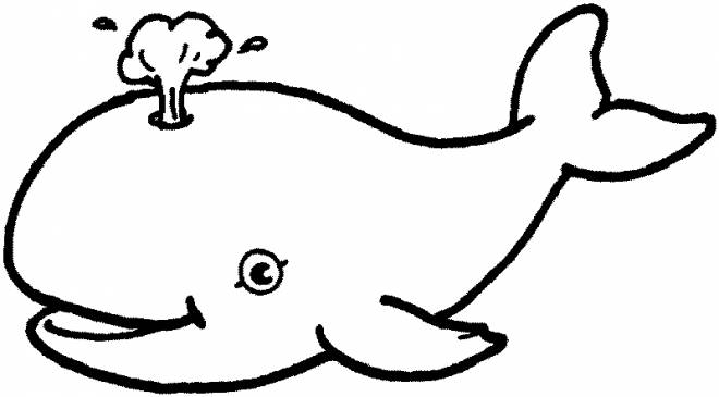 Free coloring and drawings Beluga for children Coloring page