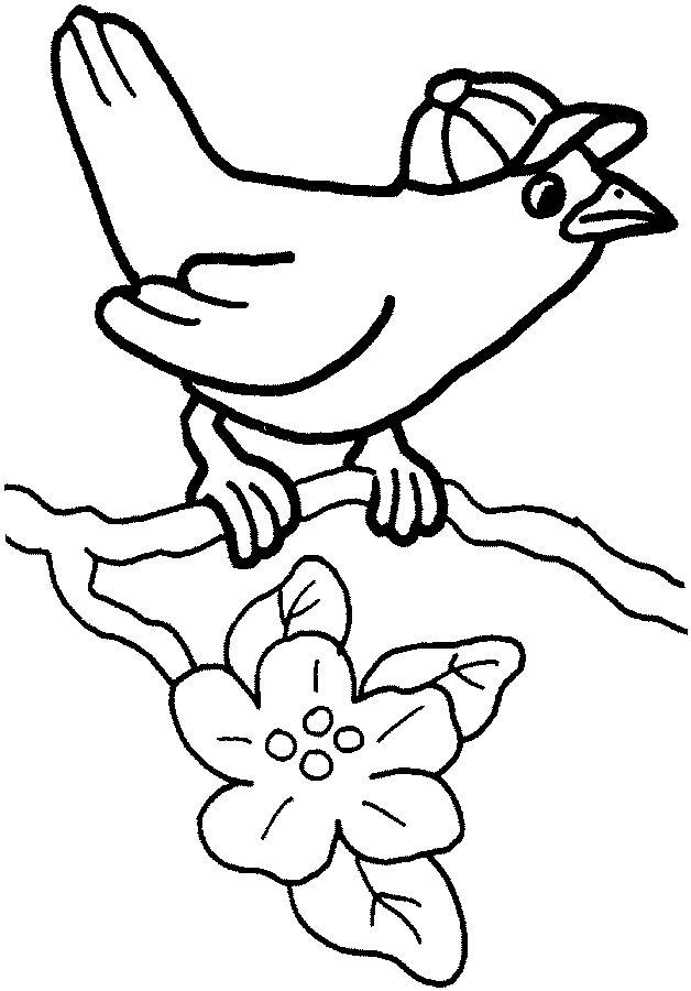Free coloring and drawings A Bird wearing a hat Coloring page