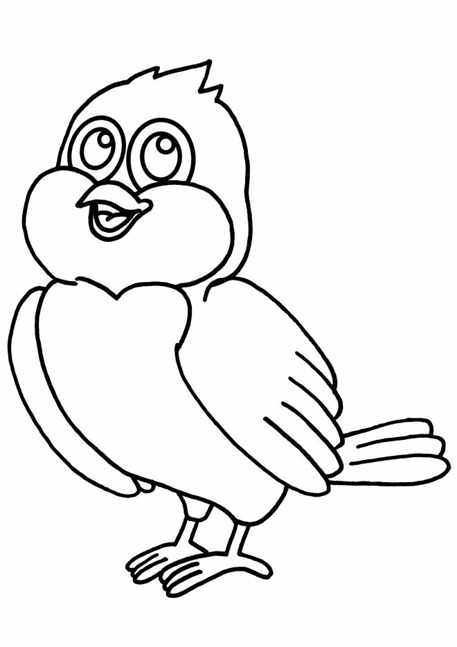 Free coloring and drawings Color bird Coloring page