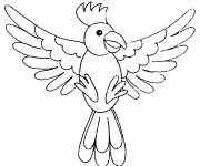 Free coloring and drawings Parrot bird Coloring page