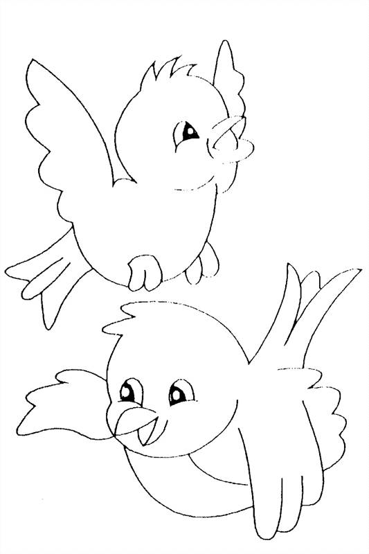 Free coloring and drawings Singing birds Coloring page