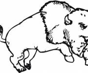 Coloring pages A jumping Bison