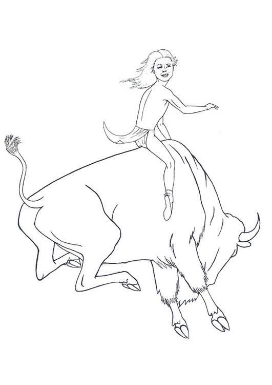 Free coloring and drawings A young man on the Bison Coloring page