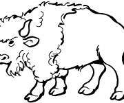 Free coloring and drawings Big Bison Coloring page