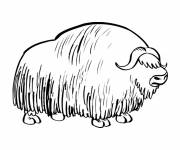 Coloring pages Bison all covered