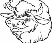 Coloring pages Bison head