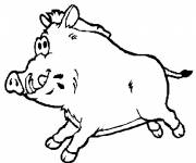 Coloring pages Boar
