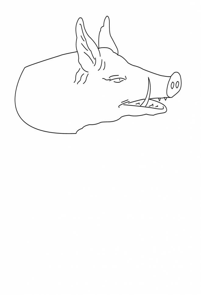 Free coloring and drawings Boar animal Coloring page