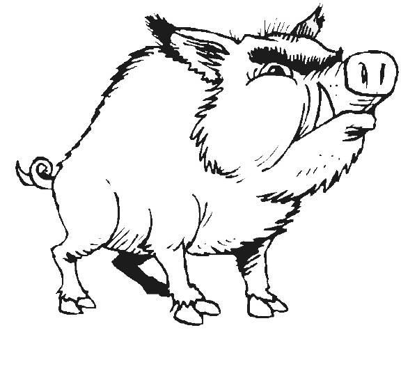 Free coloring and drawings Boar to cut out Coloring page