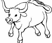Coloring pages Carving bull