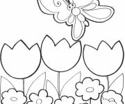 Free coloring and drawings Smiling butterfly Coloring page