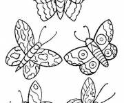 Free coloring and drawings Stylized butterflies Coloring page