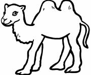 Free coloring and drawings Camel Coloring page