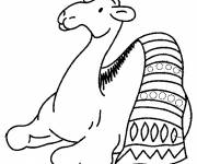 Free coloring and drawings Camel and carpet Coloring page