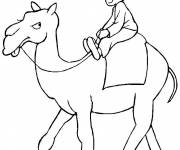 Free coloring and drawings Camel and child Coloring page