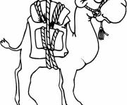 Free coloring and drawings Camel and luggage Coloring page