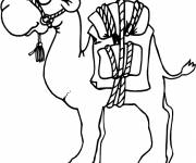 Coloring pages Cartoon camel