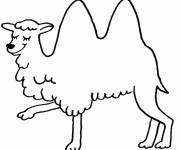 Free coloring and drawings Happy camel Coloring page