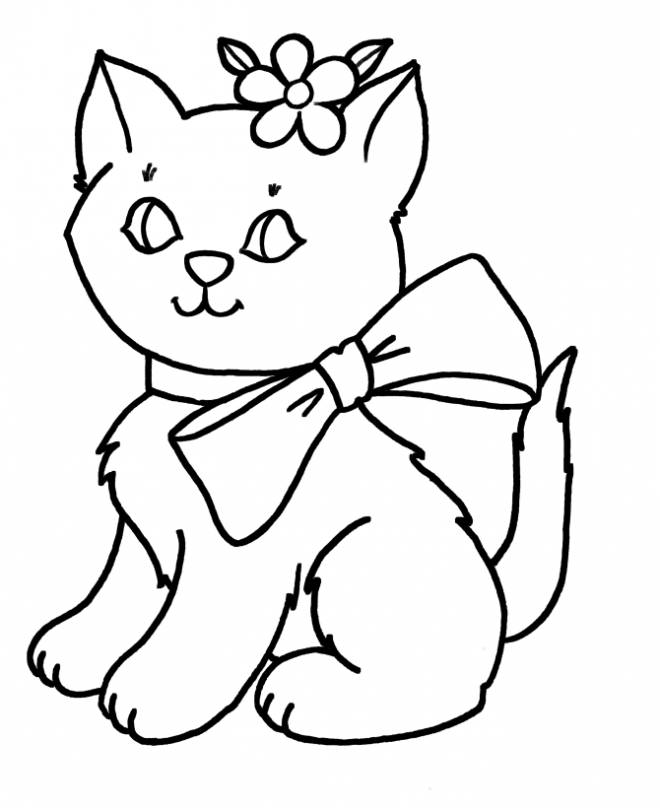 Free coloring and drawings A beautiful cat Coloring page