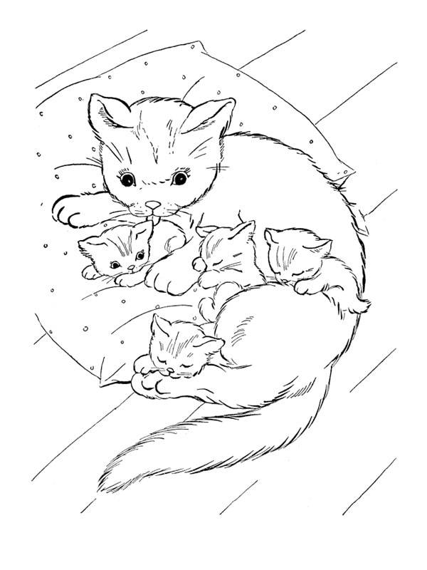 Free coloring and drawings A cat cares for her kittens Coloring page