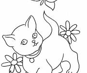 Coloring pages Cat and a butterfly