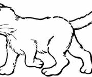 Free coloring and drawings Kitten online Coloring page