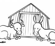 Coloring pages Beef and Donkey
