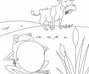 Free coloring and drawings Beef and frog Coloring page
