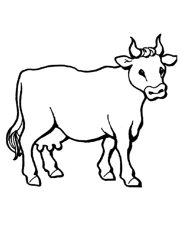 Free coloring and drawings Beef Drawing Coloring page