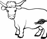 Coloring pages Beef in black and white