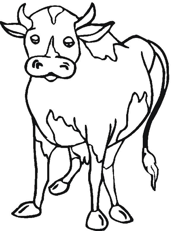 Free coloring and drawings Beef in color Coloring page