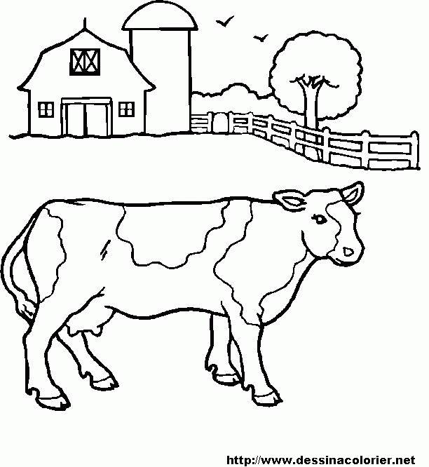 Free coloring and drawings Cow in the meadow Coloring page