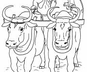 Coloring pages Peasant and Ox