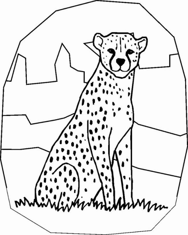 Free coloring and drawings Cheetah easy Coloring page