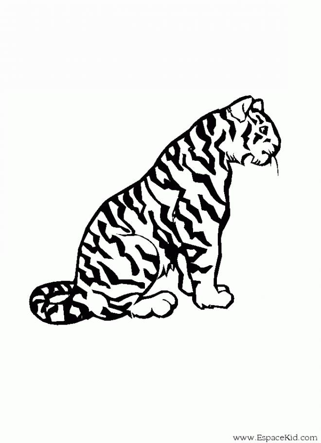 Free coloring and drawings Cheetah for child Coloring page