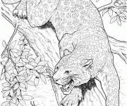 Coloring pages Cheetah in pencil