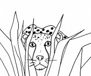 Coloring pages Hidden cheetah