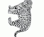 Coloring pages Portrait of a Cheetah