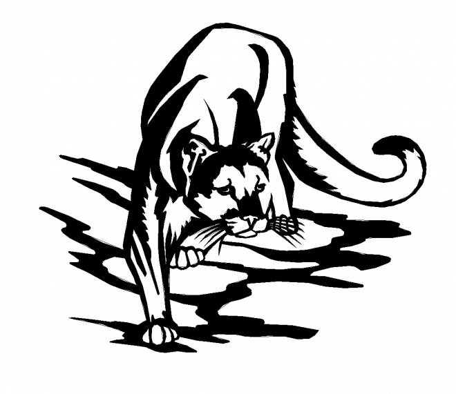 Free coloring and drawings Black cougars is white Coloring page
