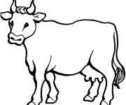 Free coloring and drawings Cow in line Coloring page